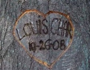 Char engraved a natural heart in their tree